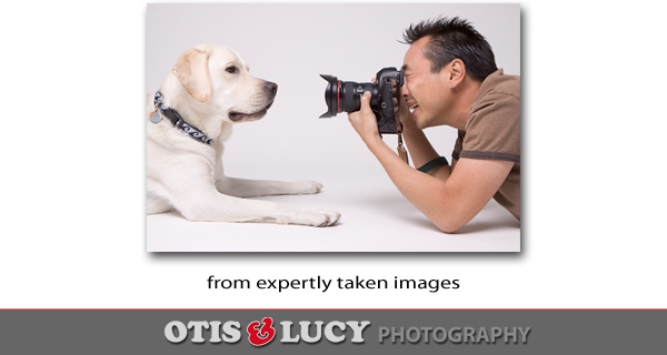 expertly taken images